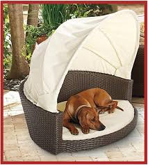 Outdoor Canopy Dog Bed. I will totally get my animals ridiculous ...