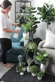 My Faux Plant Life + Tips on How to Get the Jungalow Look to Fit Your Style  - Emree Collective