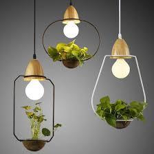 nature inspired lighting. Nature Decor, Lighting, Sedum Hanging Lights, Beautiful Natural Inspired Design Lighting G