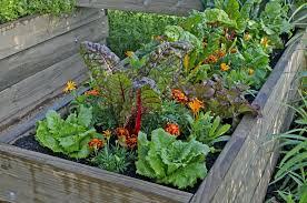 Planting Guide For Home Gardening In Alabama Alabama