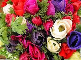 En Couleurs Imprimer Nature Fleurs Num Ro 598467
