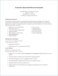 Resume Professional Summary Adorable Examples Of A Professional Summary For A Resume Resumelayout