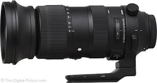 Sigma Teleconverter Compatibility Chart Sigma 60 600mm F 4 5 6 3 Dg Os Hsm Sports Lens Review