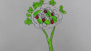 realistic apple tree drawing. Modren Apple How To Draw Apple Treedraw A Realistic  Tree Step By With Realistic Apple Tree Drawing I