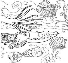 Small Picture Adult under the sea coloring pages Under The Sea Plants Coloring
