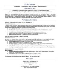 Professional Summary Resume Simple Download Our Sample Of Professional Summary Resume Wwwmhwaves