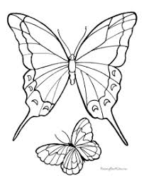 Here's a perfect butterfly coloring page for preschoolers. Butterfly Coloring Pages Sheets And Pictures