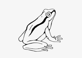 Small Picture Inspirational Tree Frog Coloring Page 37 For Your Gallery Coloring