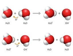 how to change the ph of water two chemical equations demonstrating proton transfer in water in the first equation water does lemon change ph water