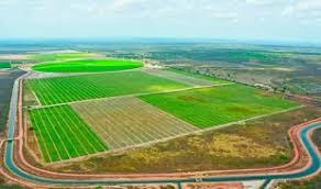 Resultado de imagem para agricultura irrigada