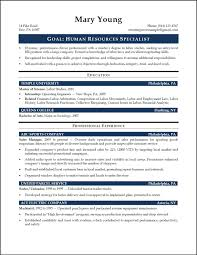 Human Resources Job Description Resume Best Of Portfolio Manager