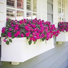 Decorative Window Boxes Side view of decorative window box with pink flowers close up 30