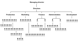 Ryanair Organisational Structure Chart Human Resources Table Of Contents