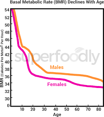 Basal Metabolic Rate Bmr Chart Basal Metabolic Rate How To Increase Metabolism Fast