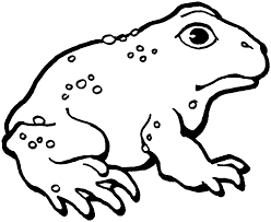 Small Picture Toad Coloring Pages GetColoringPagescom