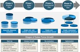 Sales Operations Org Chart The Four Phases Of Best Practice Sales Operations Organizations