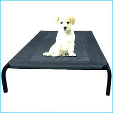 large dog beds petsmart extra bed elevated outdoor raised pet cot indoor durable bunk for dogs amazing awesome with canopy