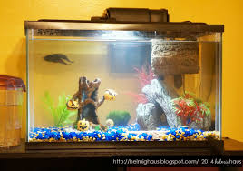 Fish Tank Accessories And Decorations Halloween Fish Tank Decorations Cheap Easy Halloween Decorations 90