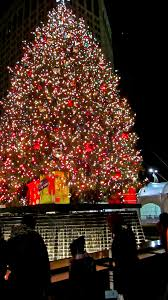 Birmingham Mi Christmas Tree Lighting Heres Everything You Need To Know About Downtown Detroits