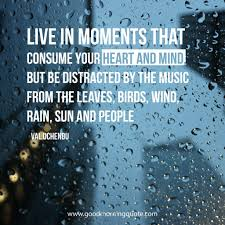 Rainy Day Quotes And Sayings To Brighten Your Day Good Morning Quote