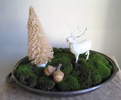 Decorating With Moss Balls Moss Balls For Decoration Home Decorating Ideas 50