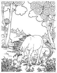 Difficult And Hard Coloring Page Of Realistic Unicorn   Fantasy ...