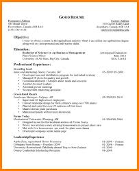 Objectives For Resumes Mesmerizing Examples Of Career Objective In Resumeobjectives For Resumes For