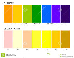 Ph And Chlorine Charts Stock Vector Illustration Of Acidic