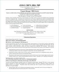 Resume Overview Examples Resume Summary Statement Examples Elegant ...