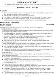 Sample Summary Statements For Resumes  resume summary statement