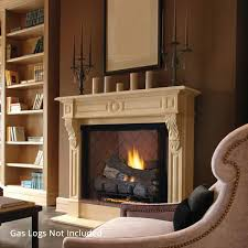 Ventless Fireplaces | WoodlandDirect.com: Fireplace Units, Vent ...