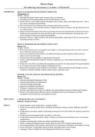 Digital Business Development Resume Samples Velvet Jobs