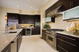 Lenox Thermofoil Wengi With Aluminum Doors Contemporary Kitchen