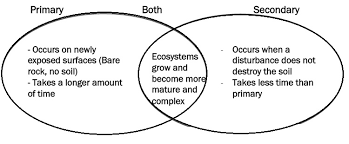 Primary Succession And Secondary Succession Venn Diagram Use The Venn Diagram To Compare The Two Types Of Ecological