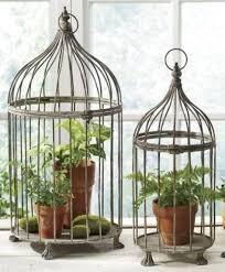 bird cages bird cage garden