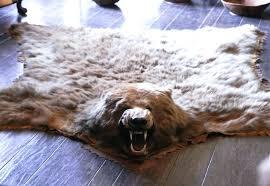 fake bear rug lovely with head skin for rugs ideas polar