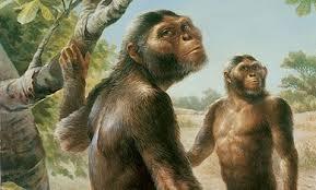 Resultado de imagen de Los ancestros más antiguos  de la Humanidad