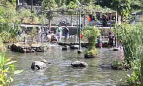 Tlatar boyolali, wisata taman air seru berbasis edukasi. 10 Foto Umbul Tlatar Boyolali 2021 Harga Tiket Masuk Objek Wisata Pemancingan Jam Buka Penginapan Jejakpiknik Com