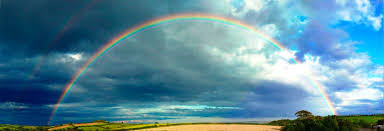 Why Does the Rainbow have <b>7 Colors</b>? | OpenMind