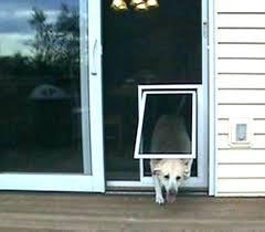french patio door with dog door built in door sliding glass door with built in dog