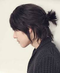 Pony Tail Hair Style ponytail hairstyles for men women medium haircut 3723 by wearticles.com