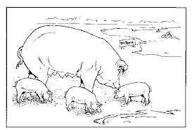 Small Picture Coloring Page Farm animals coloring pages 10