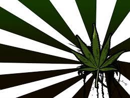 digital download Plant pot iPhone ...