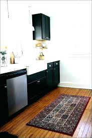 charming area rugs for kitchen rug for kitchen sink area kitchen sink rugs kitchen sink rugs
