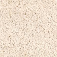 cream carpet texture. Fresh Image Devonshire Cream 722 Carpet Texture O