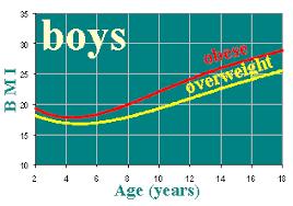 Bmi Chart Child Bmi Z Score Calculation