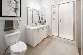 Bathroom Rentals Best Decorating Design