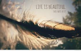 Beautiful Quote Wallpapers Best Of Beautiful Life Wallpaper