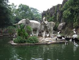 Hasil gambar untuk kebun binatang surabaya