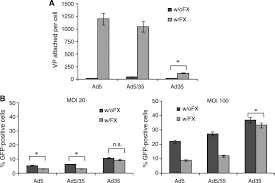 Transduction of Liver Metastases After Intravenous Injection of Ad5/35 or  Ad35 Vectors With and Without Factor X-Binding Protein